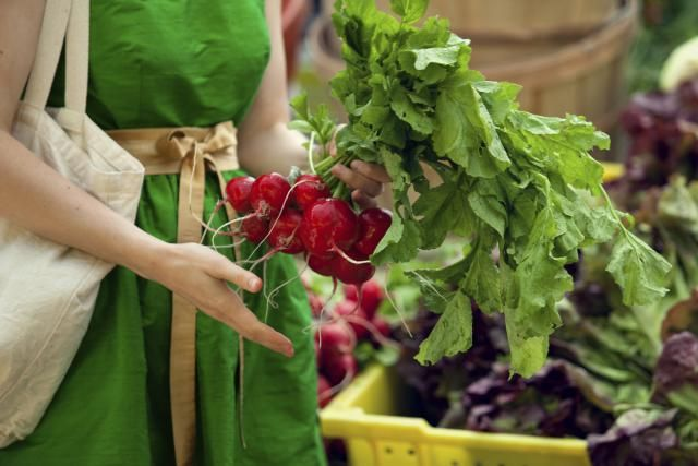 What's a Taproot and Should it be on Your Shopping List?