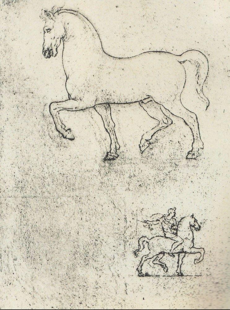 Leonardo da Vinci - Sketches of Horses | Leonardo da Vinci ...