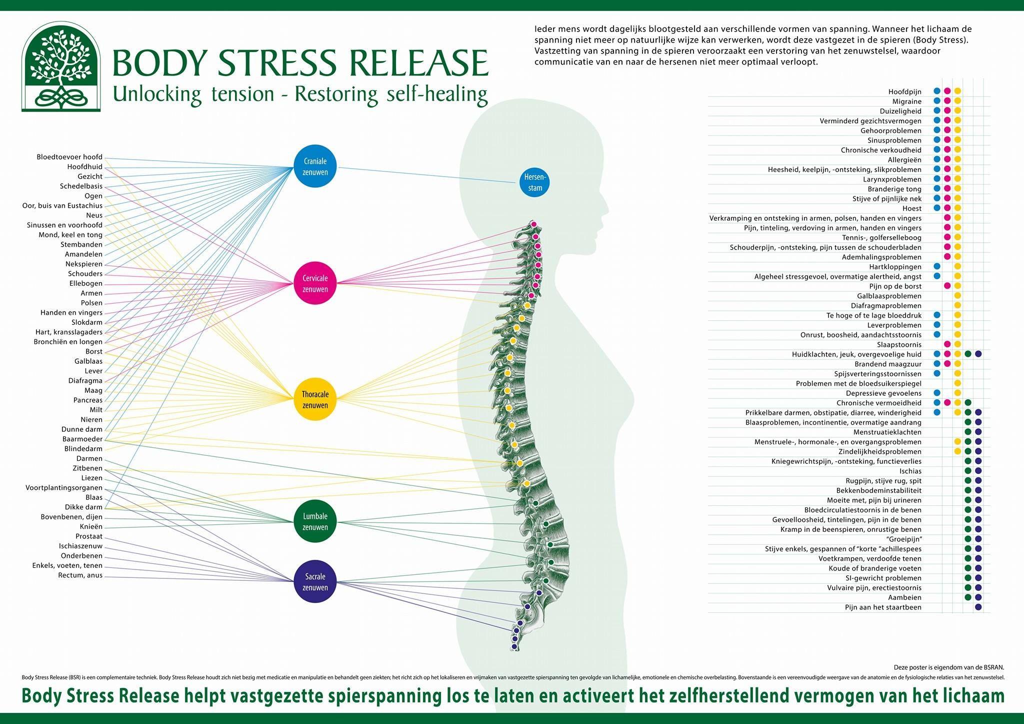 BSR..? BSR! Wat is Body Stress Release eigenlijk? Een gezond ...