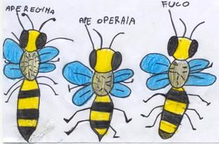 ape regina - Cerca con Google