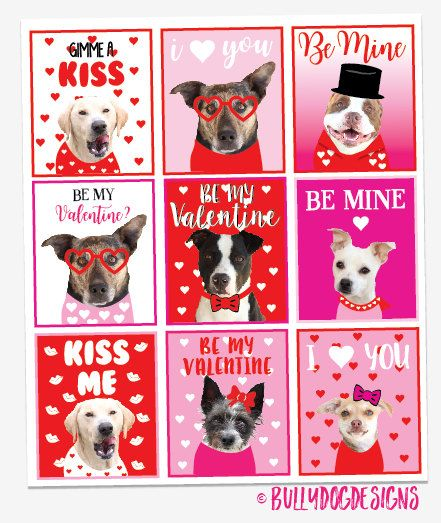 Valentine Card Diy Downloadable Gift Tag By Bullydogdesigns Dog Valentines Animal Rescue Ideas Dog Adoption Event