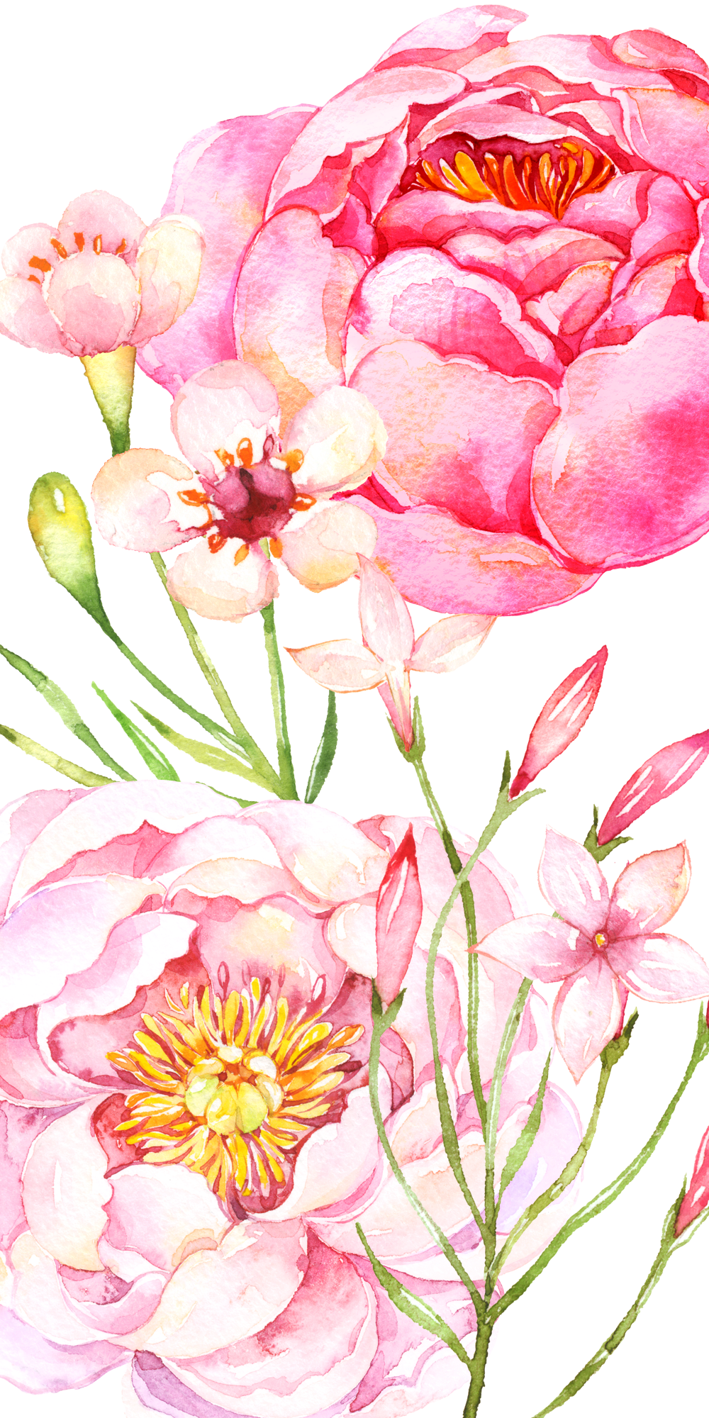 Pink Peonies Casetify Iphone Art Design Flowers Floral