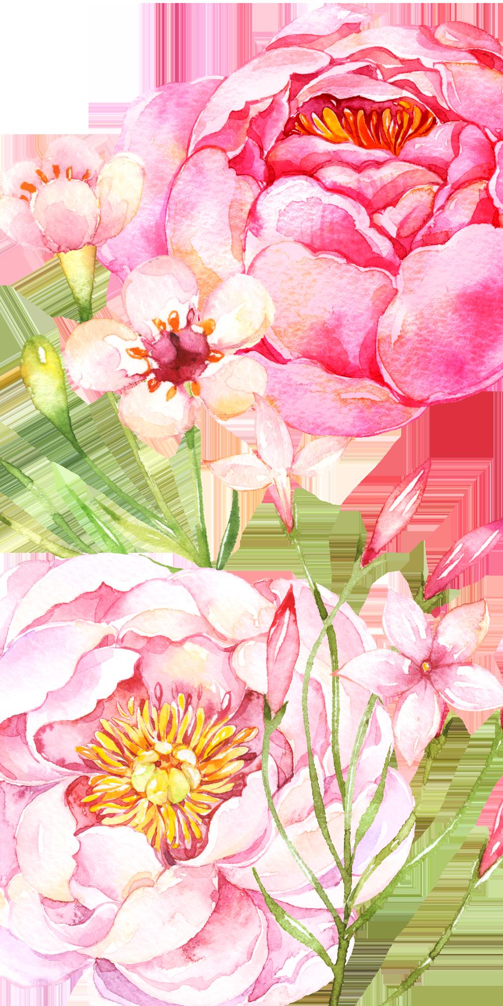 Pink Peonies Casetify Iphone Art Design Flowers Floral Floral Watercolor Flower Drawing Watercolor Flowers