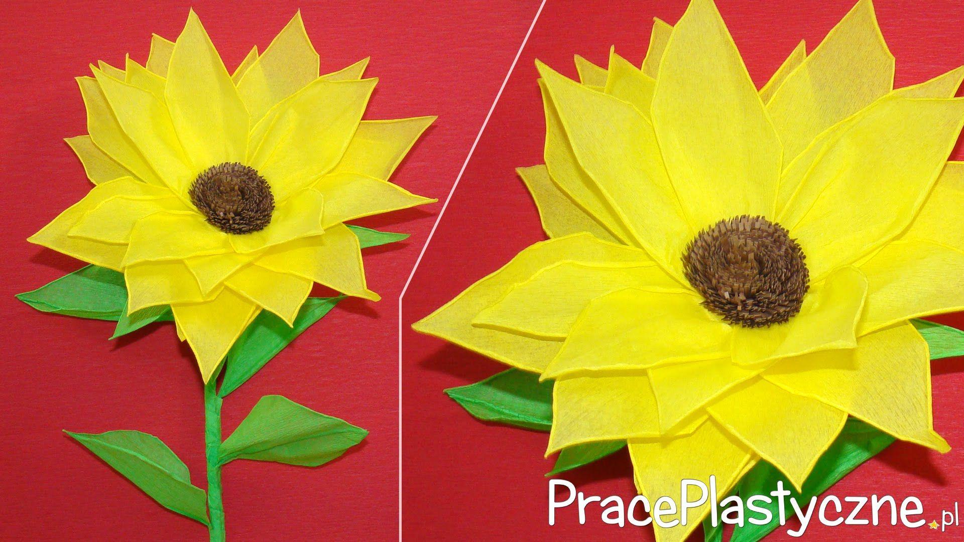 Jak Zrobic Slonecznik Z Bibuly Paper Sunflowers Paper Flowers Sunflower