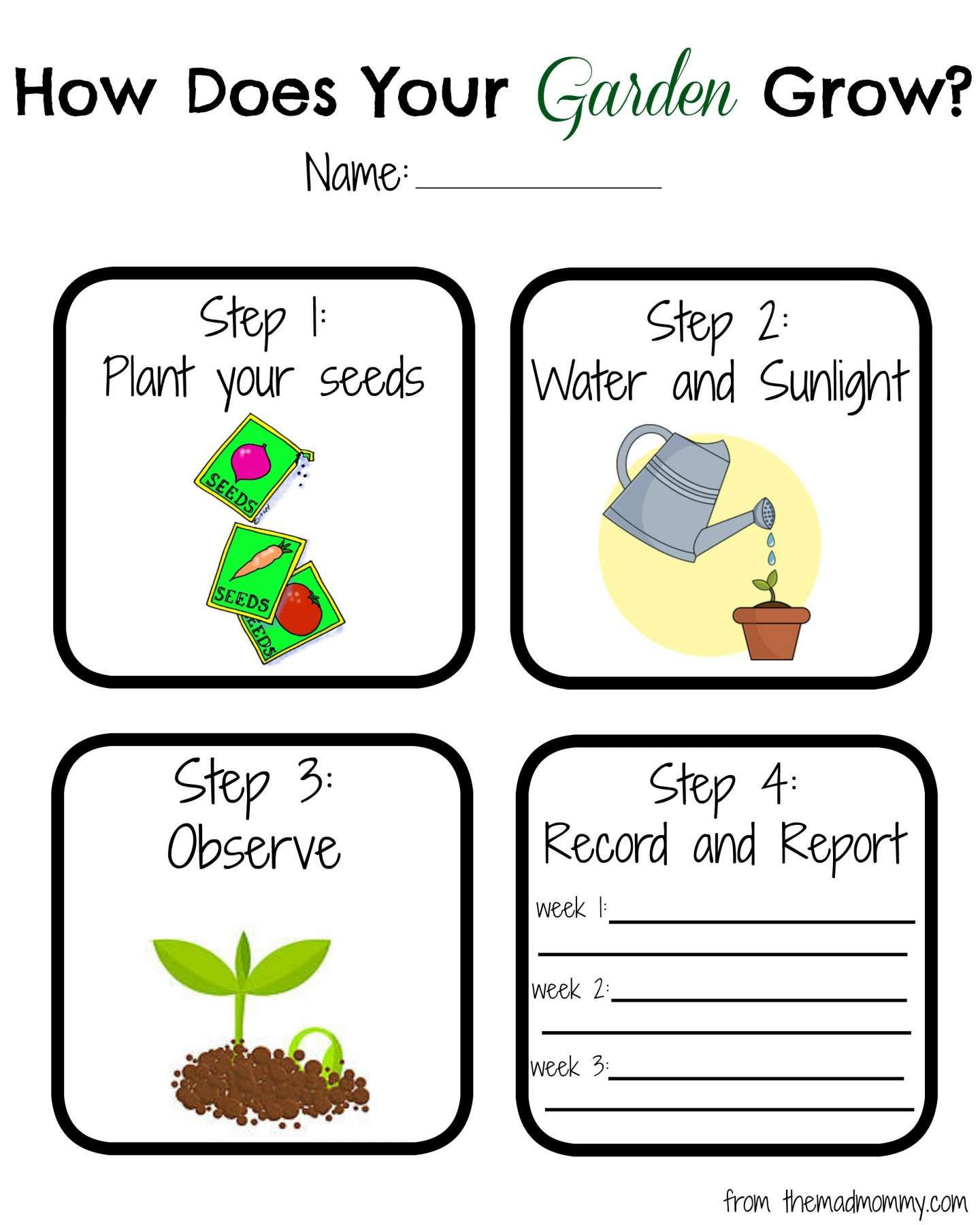 10 Plants Grow Preschool Worksheet