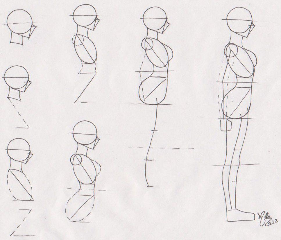Pin On Art Anatomy Visuals
