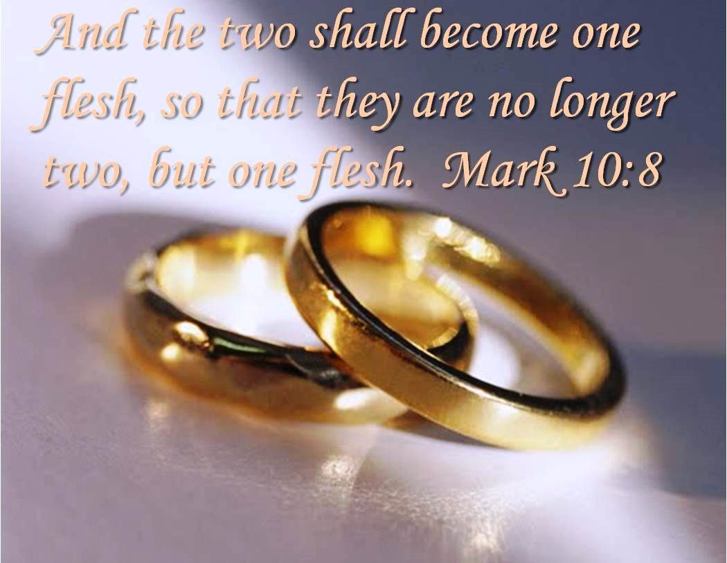 """For this reason a man will leave his father and mother and be united to · Bible Verses"
