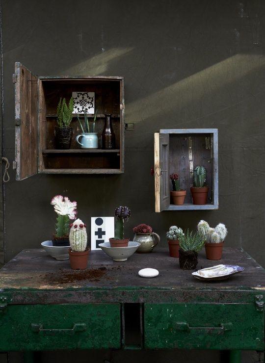 rustic + cupboard shelves   Esther Jostmeijer