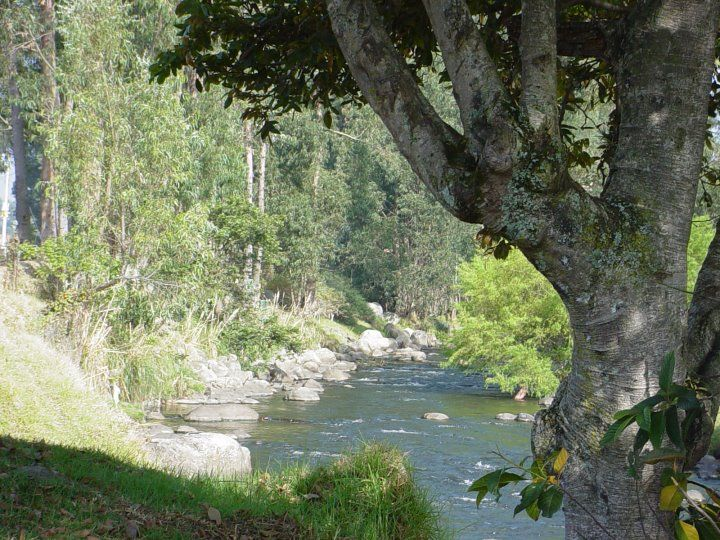 Rio Cuenca