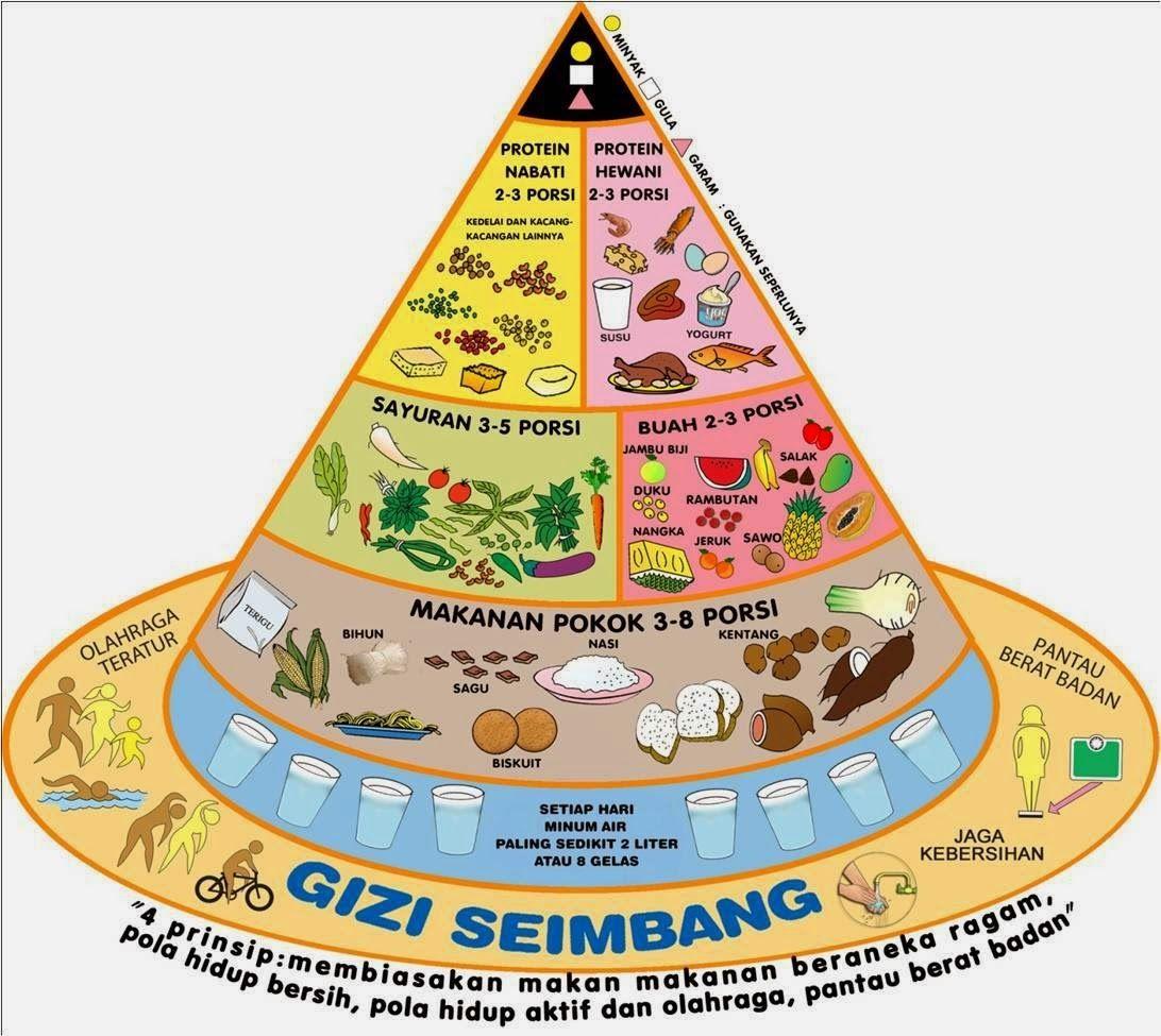 Gambar Piramida Makanan Dan 4 Sehat 5 Sempurna Makanan Nutrisi Nutrisi Anak