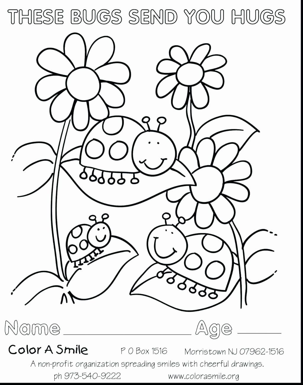 The Name Daisy Coloring Pages Designs Collections