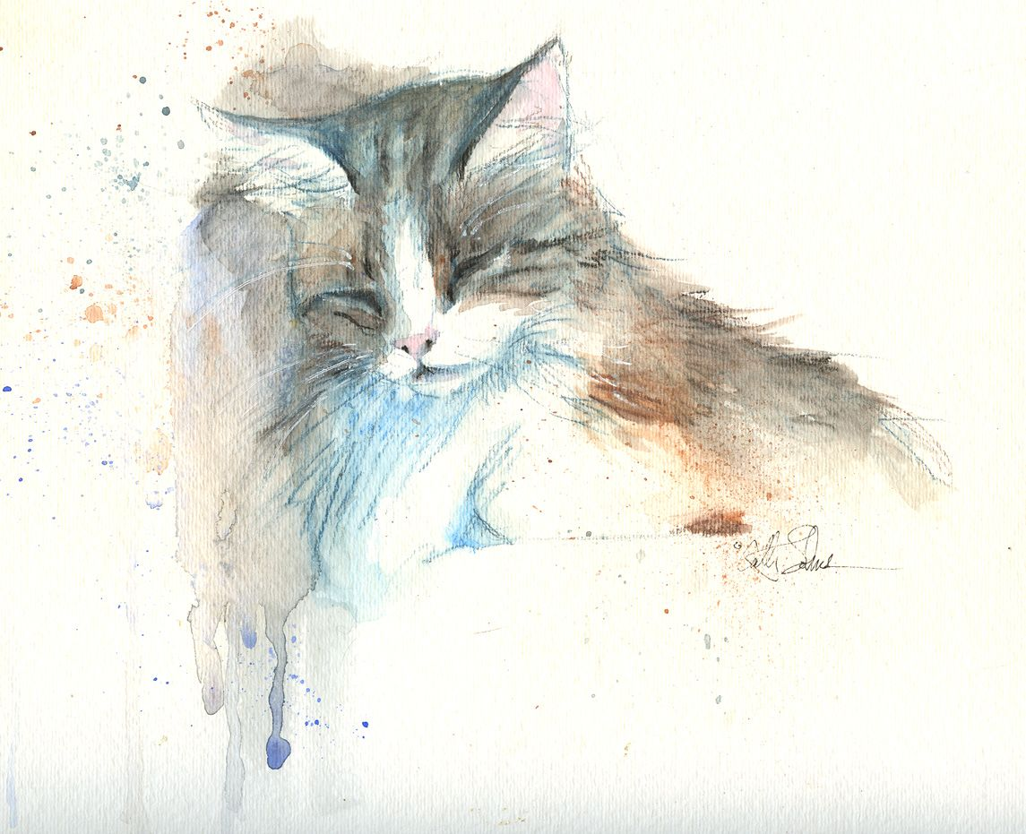 A Single Watercolor Pencil Plus Watercolor Pencils Techniques