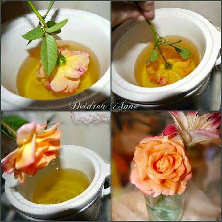 Flower preservation if you have a flower you want to save