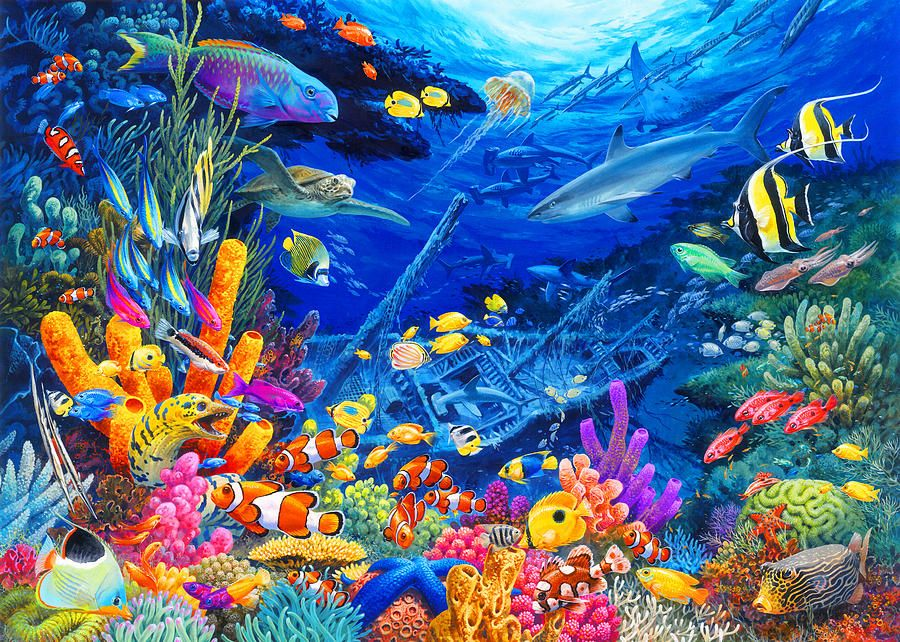 Undersea Wonders By Mgl Meiklejohn Graphics Licensing With Images Animal Paintings Painting Animal Art
