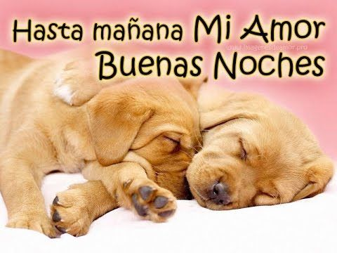 Feliz Dia A La Vida Buenas Noches Memes Romantic Movie Posters