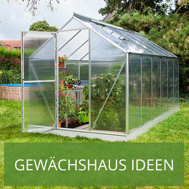 Ein Gewächshaus im Garten kann soviel mehr als nur ein Ort