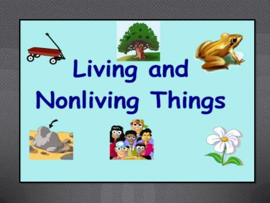Living And Nonliving Things Powerpoint By