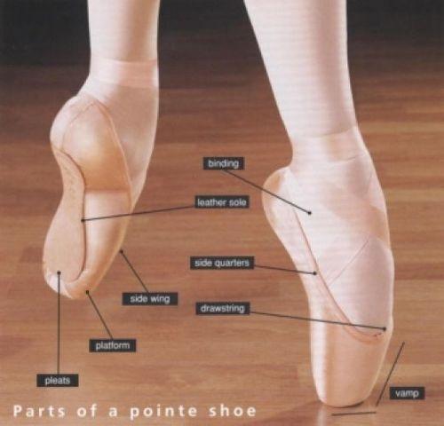 parts of a pointe shoe