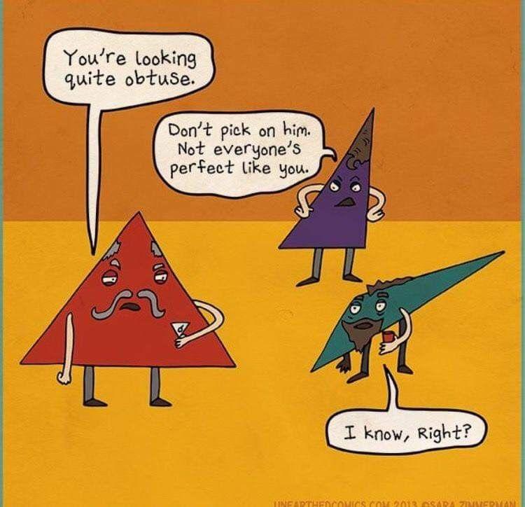 Funny image by sarah dutton math teacher humor math