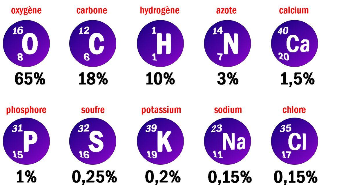 au c u0152ur de la chimie - les atomes