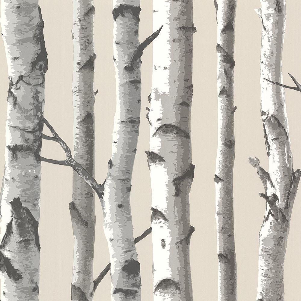 Chesapeake Tuxbury Beige Birch Tree Paper Strippable Wallpaper Covers 56 4 Sq Ft Tll21499 The Home Depot Birch Tree Wallpaper Birches Wallpaper Tree Wallpaper