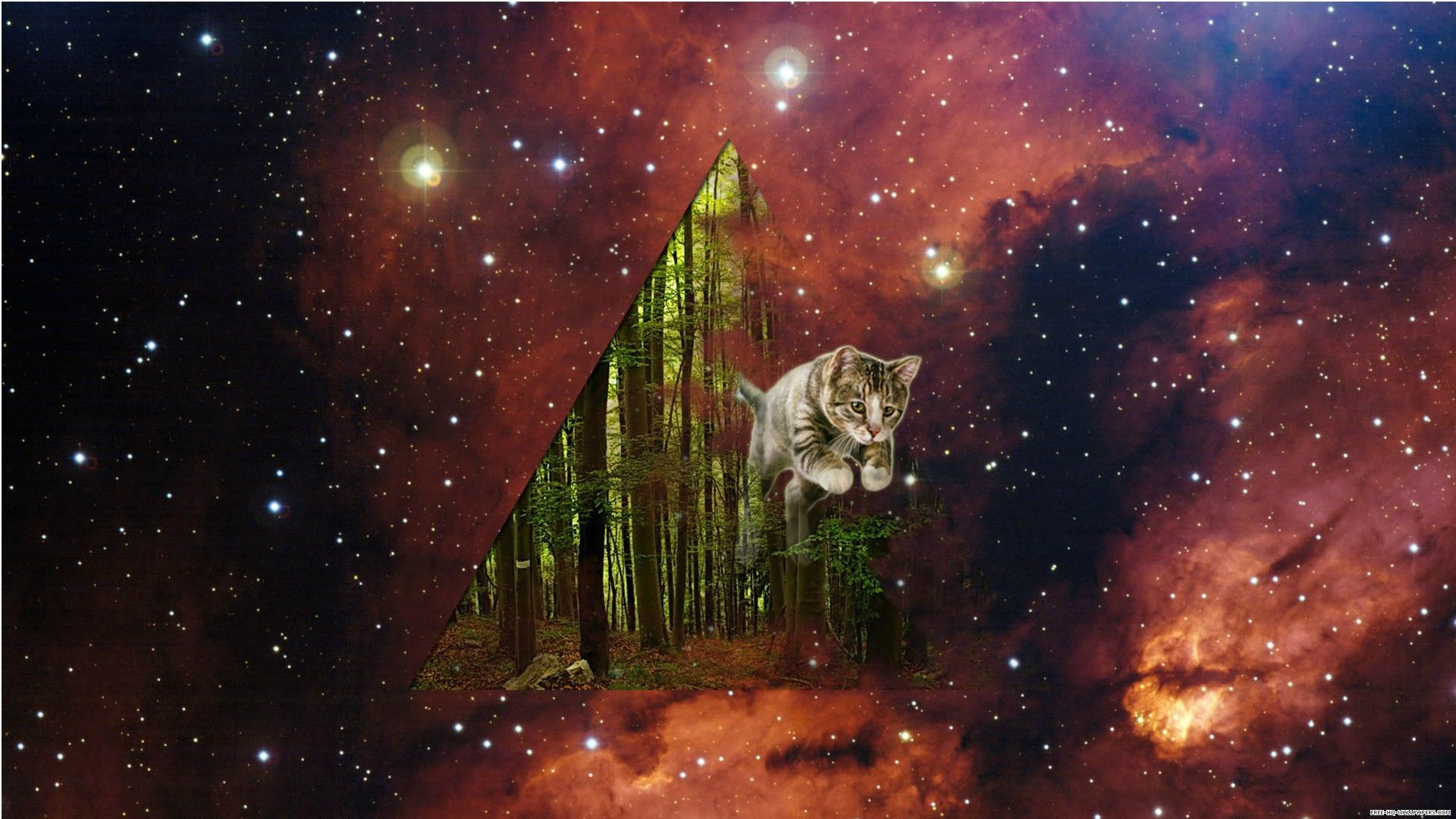 Cats In Space R Spacecats Hipster Phone Wallpaper Cat Wallpaper Space Phone Wallpaper