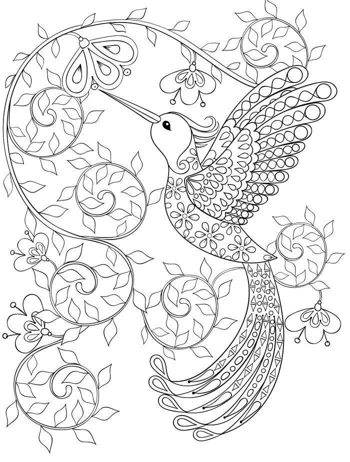 20 gorgeous free printable adult coloring pages page 11 of 22 - Hummingbird Flower Coloring Pages