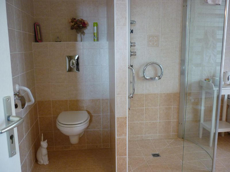 Best Ideas for Handicap Toilets for Home Use #DisabledBathroomTips ...