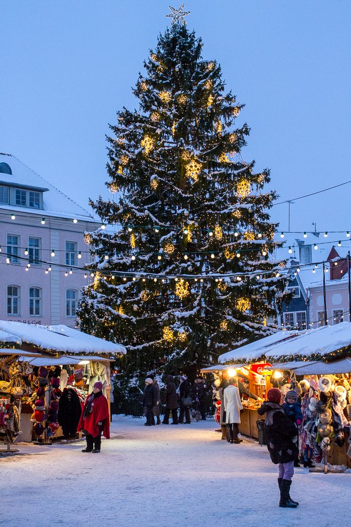 the christmas market of tallinn s old town estland. Black Bedroom Furniture Sets. Home Design Ideas
