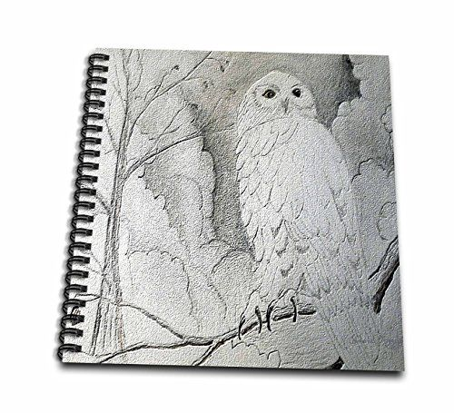 3dRose db_14407_1 Night OwlDrawing Book 8 by 8Inch >>> For more information, visit image link.