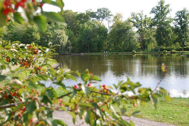 Vassar College Lake | Vassar picture locations | Pinterest ...
