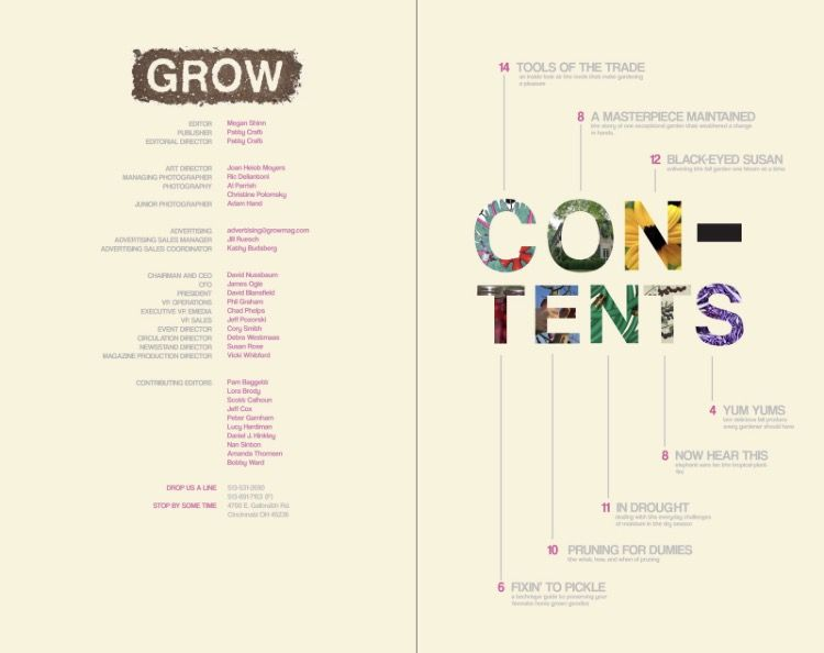Pin By Stephen Schafer On Magazine Toc Table Of Contents Design