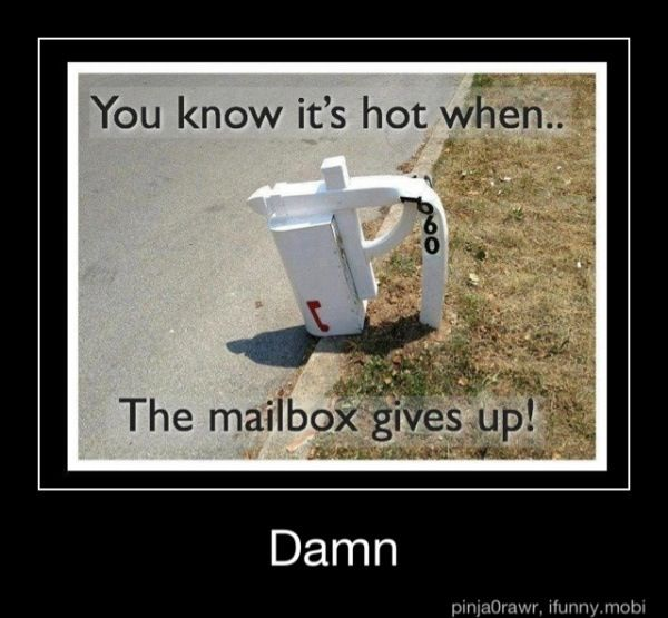 You Know It S Hot When With Images Usps Humor Mailbox You Had One Job