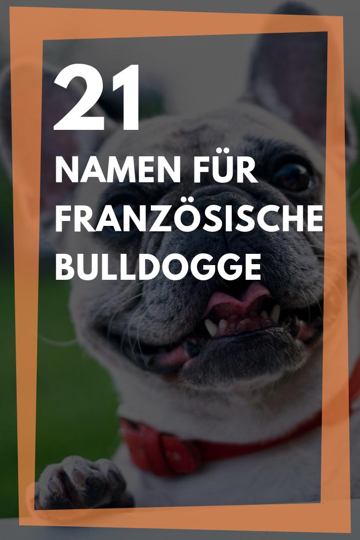 Mannliche Namen Fur Franzosische Bulldogge Mannliche Namen Fur Franzosische Bulldogge Mannliche Hundenamen Fur Franzosische Bul In 2020 French Bulldog Animals Bulldog