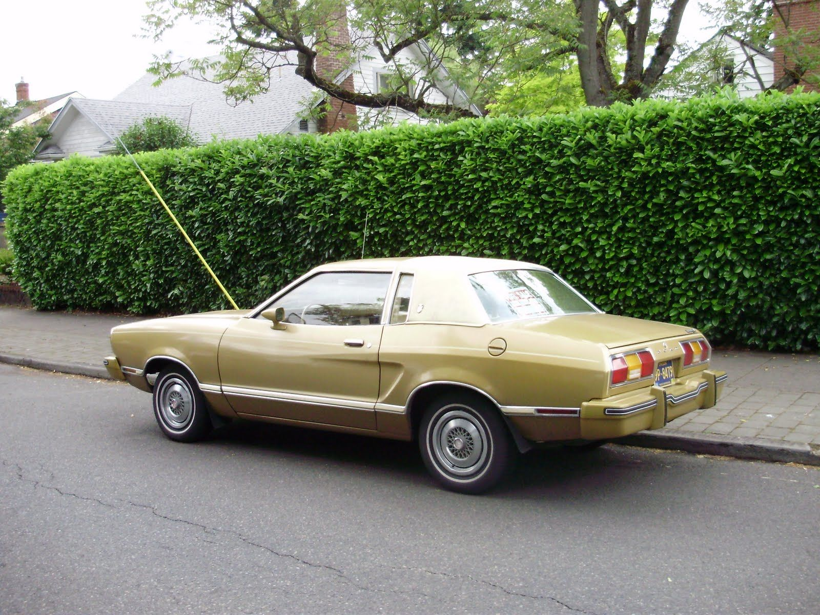 Best My First Car Was A 1977 Ford Mustang Chocolate Brown With A Tan Roof Wish I Could Find The 400 x 300