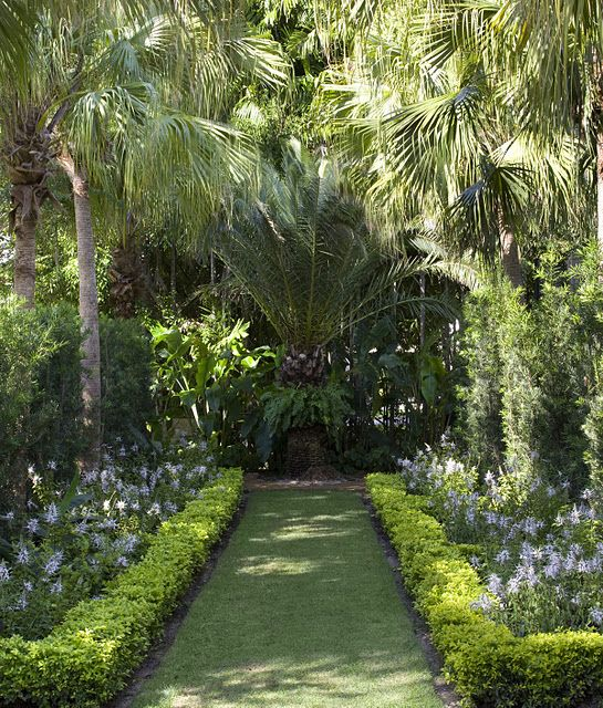 palm   garden design by fernando wong  miami