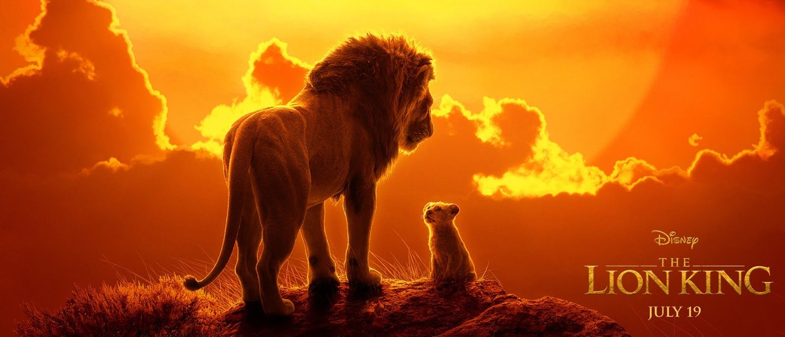 Pin by Tabitha Short on Disney! Lion king movie, Lion