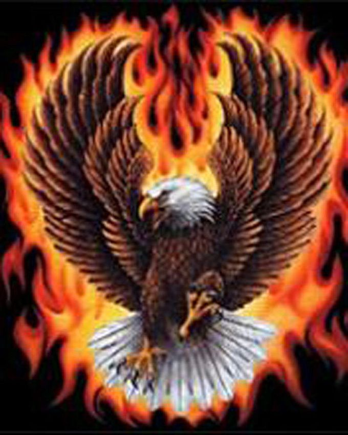 FLaming EagLe Cross Stitch Pattern***L@@K*** YOUR FINISHED