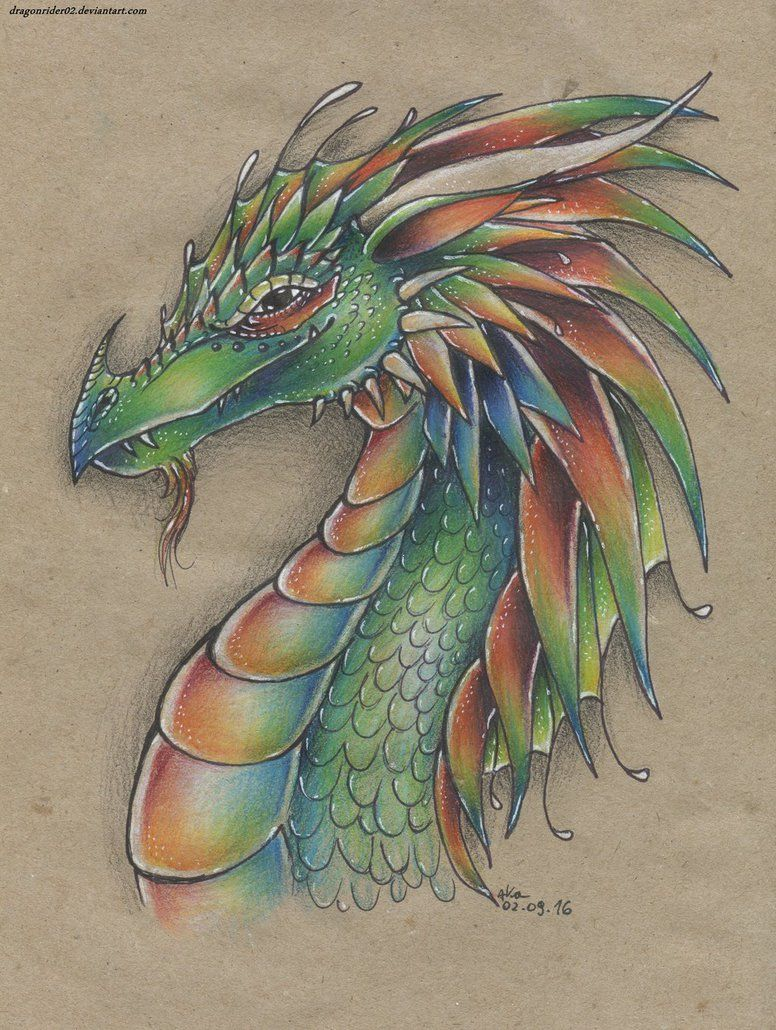 Color pencil dragon drawing by dragonrider02 deviantart com on deviantart