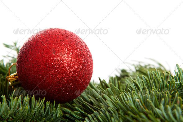 DOWNLOAD :: https://jquery.re/article-itmid-1006371205i.html ... Red Christmas ball on pine tree ...  ball, balls, christmas, close, closeup, december, decoration, feast, glitter, green, holidays, noel, one, pine, red, seasonal, tree, white background, x-mas  ... Templates, Textures, Stock Photography, Creative Design, Infographics, Vectors, Print, Webdesign, Web Elements, Graphics, Wordpress Themes, eCommerce ... DOWNLOAD :: https://jquery.re/article-itmid-1006371205i.html