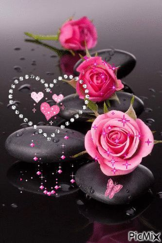 Tagged Beautiful Rose Flowers Beautiful Flowers Wallpapers Beautiful Roses,House Renovation Before And After Pictures
