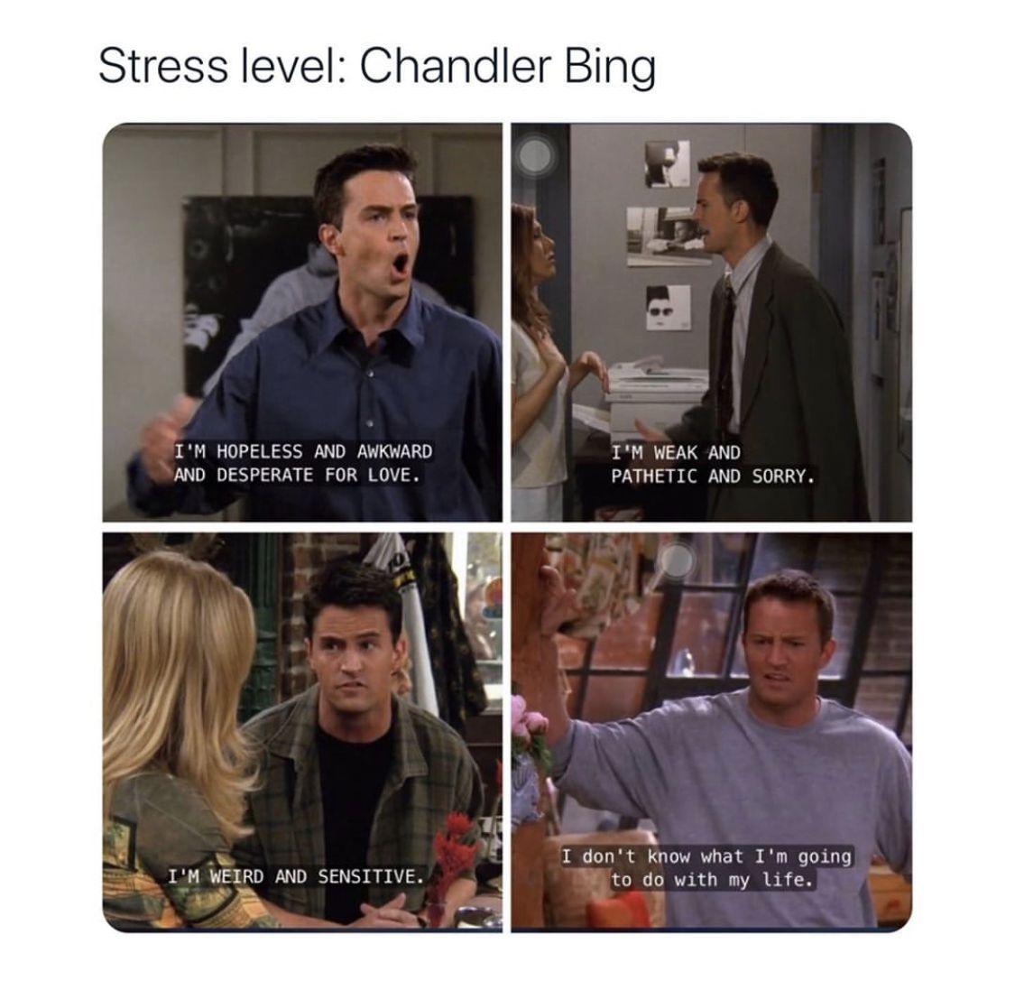 Funny Memes Funnymemes Friends Friendstvshow Friendsmemes Chandler Bing Chandler Bing One Job Daily Odd Com Friends Funny Moments Friend Jokes Friends Tv