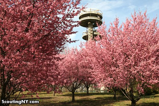 Springtime in Flushing Meadows Park, Queens, NY