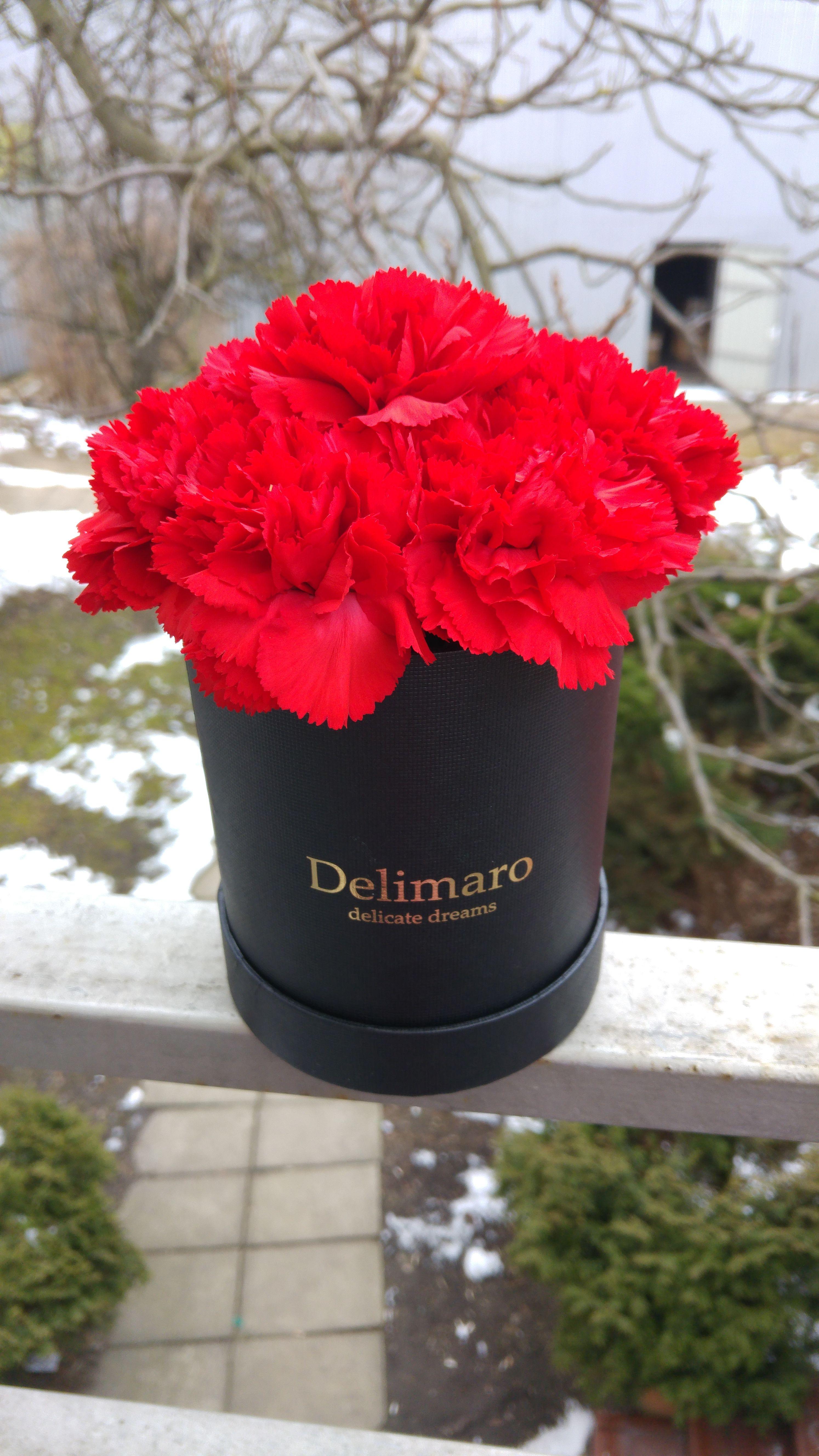 Czerwone Gozdziki W Czarnym Pudelku Dried Flower Arrangements Dried Flowers Flowers