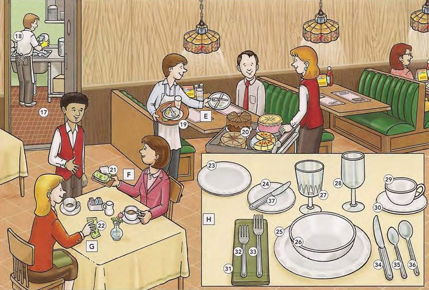 Restaurant vocabulary and basic phrases in a restaurant