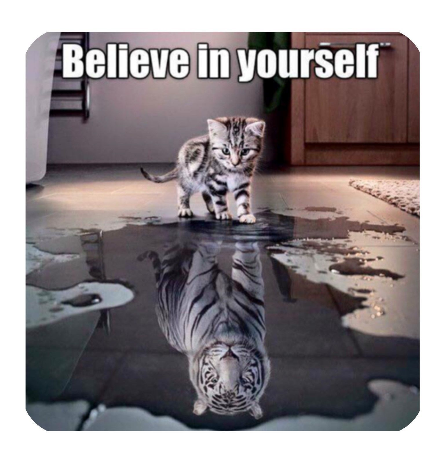 Coaster Cup Lesson Look Believe Yourself Reflect Puddle