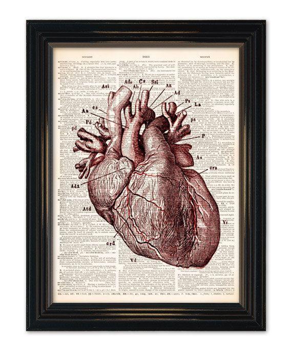 Heart Diagram Art Wiring Diagram Services