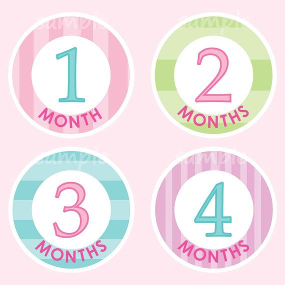Monthly ONESIES® Stickers Girl Milestone Baby by LilCubbyKids