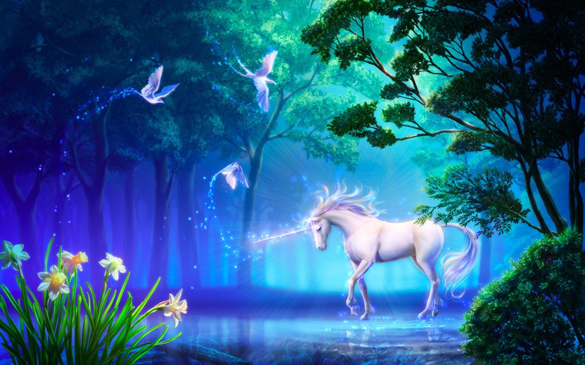 Most Inspiring Wallpaper Horse Magic - 6cfca58362a62c1e0938121f279bc0c6  2018_79270.jpg