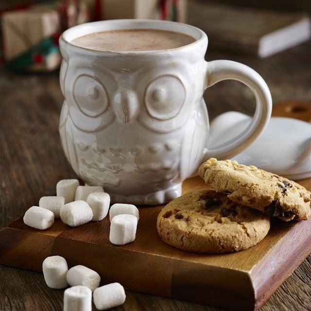 Ceramic Owl Shaped Hot Chocolate Christmas Gift Mug by Lakeland